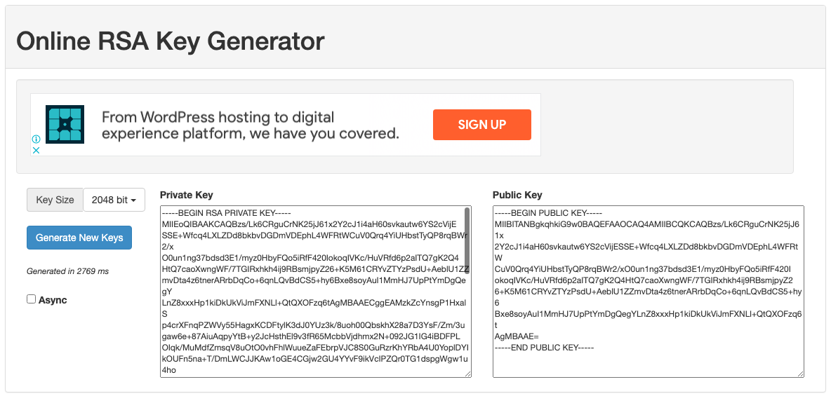 Generated 2048-bit RSA public and private key pair
